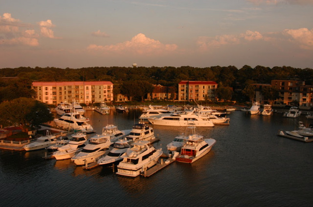 Mermaid Of Hilton Head Boat Tours Find The